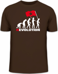 Herrenshirt EVOLUTION REVOLUTION