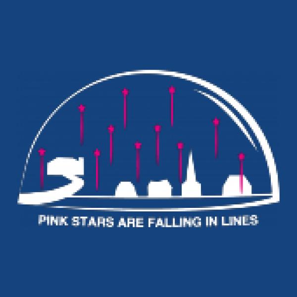 Herren Kapuzenpullover Pink Stars